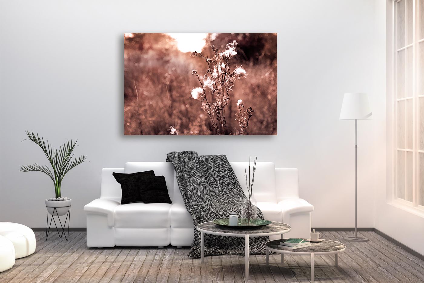 Nature photo, landscape photo, floral photo, flora photo example image 2