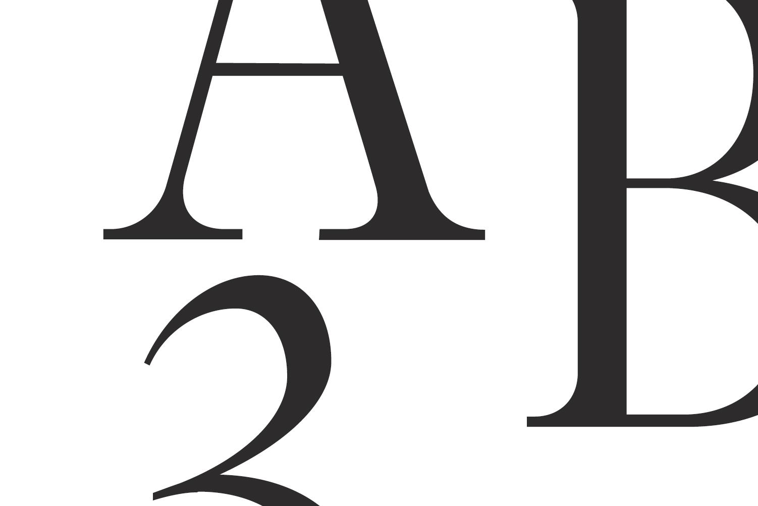 Glamour Luxury Serif Font Family example image 5