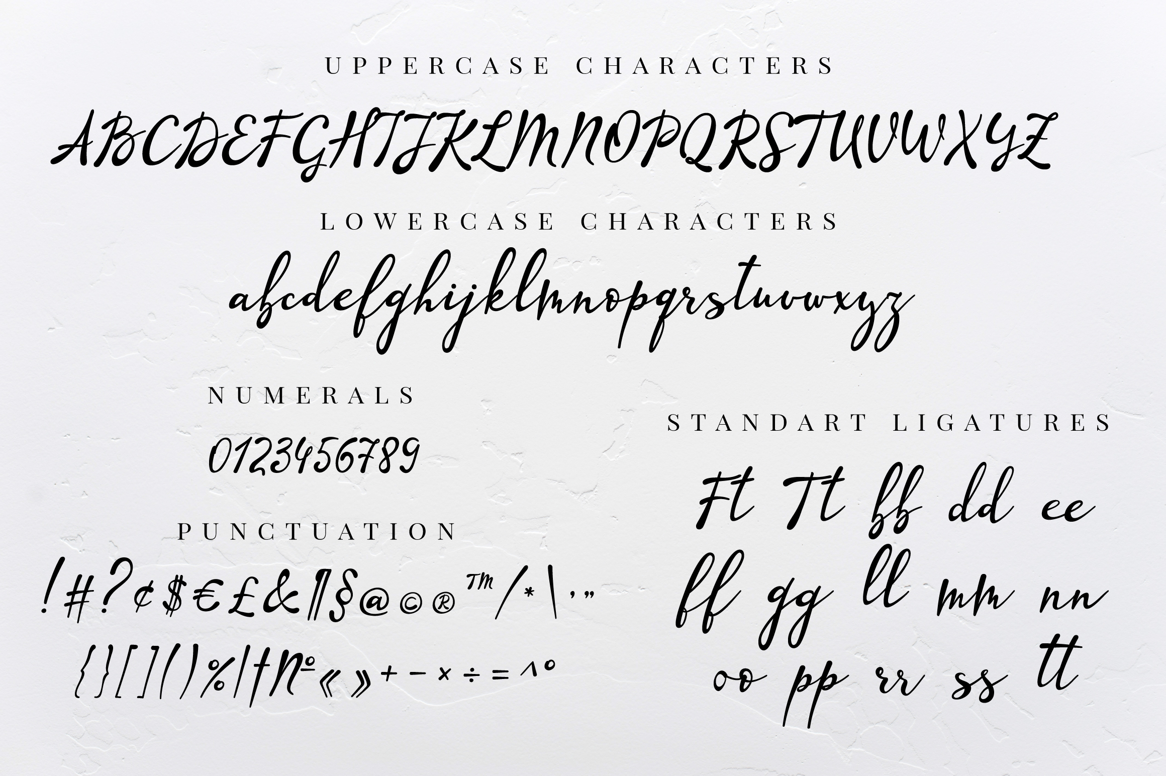Lazy Daisy - calligraphy font with swashes example image 9