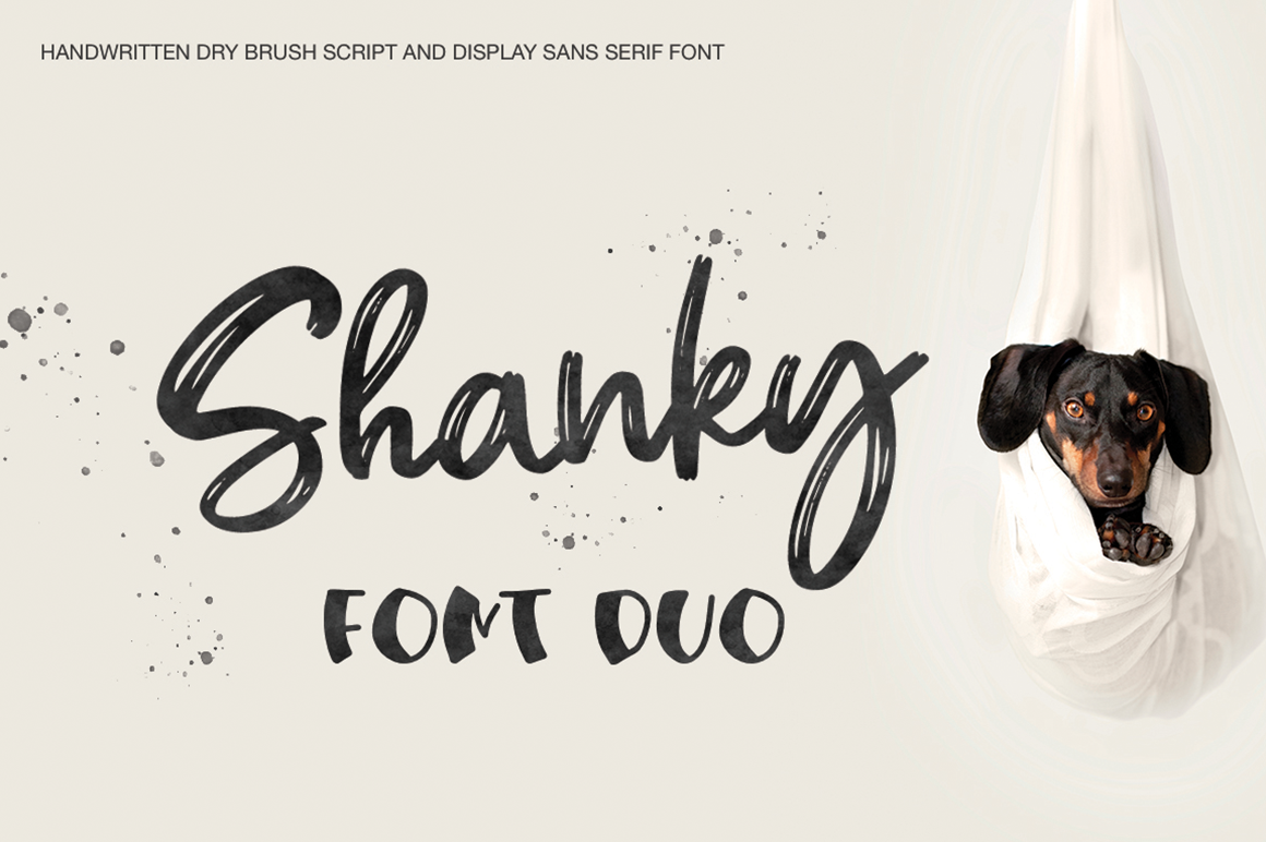 Shanky example image 1