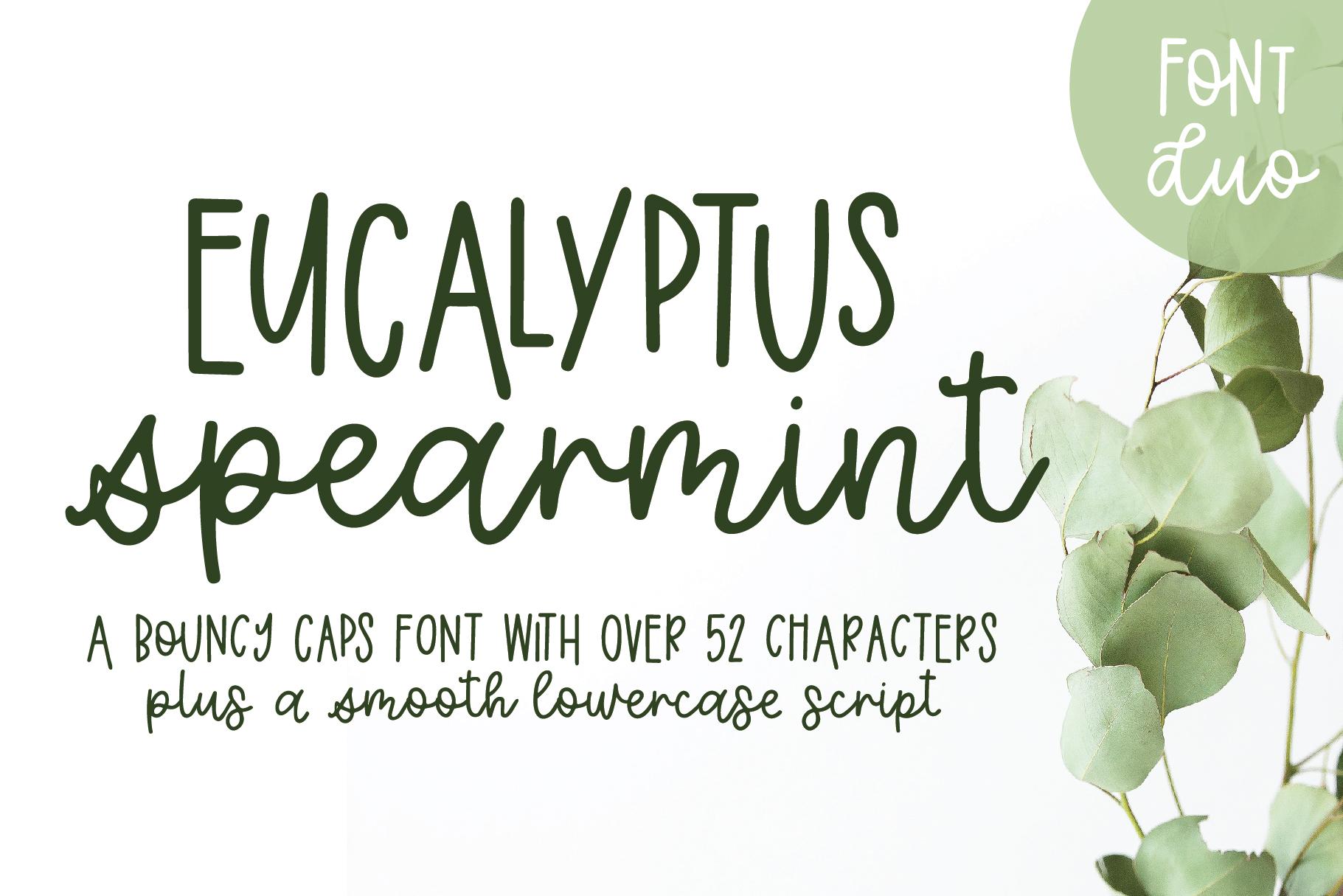 Eucalyptus Spearmint, A Smooth Monoline Font Duo example image 1