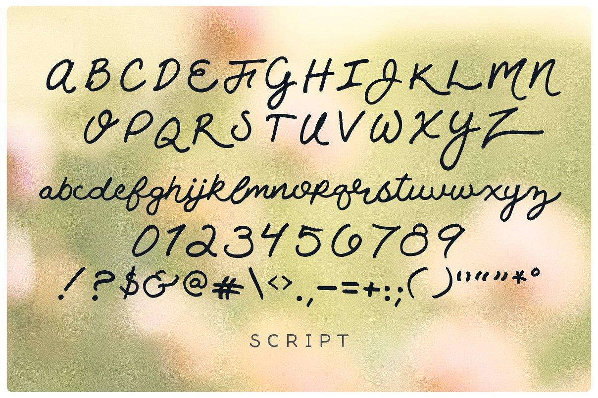 Rosie Script example image 4