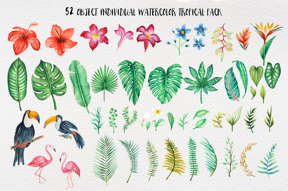 TROPICAL Watercolor clip art pack example image 2