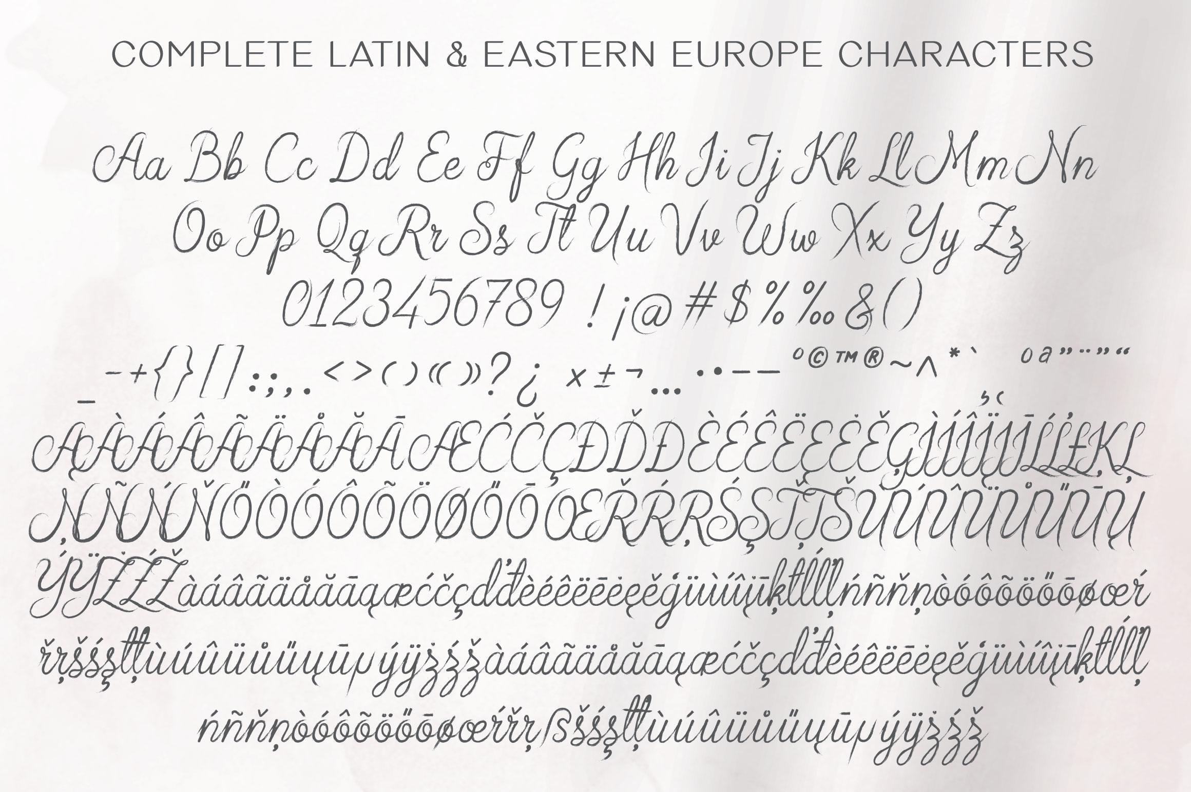 Arabian Script | Brush Font example image 7