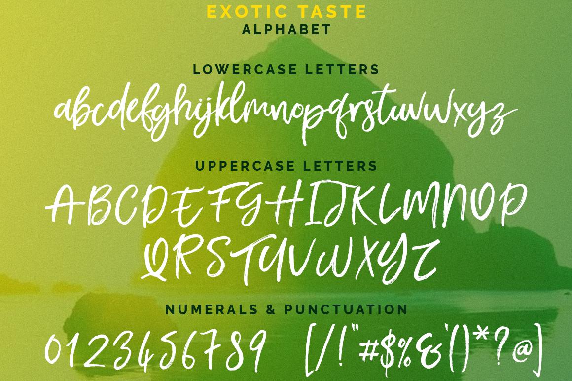 Exotic Taste Script Font example image 3