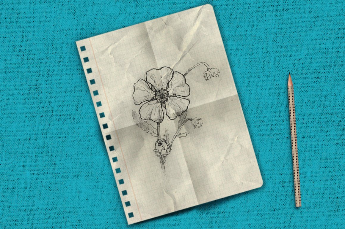 Notebook paper set example image 4