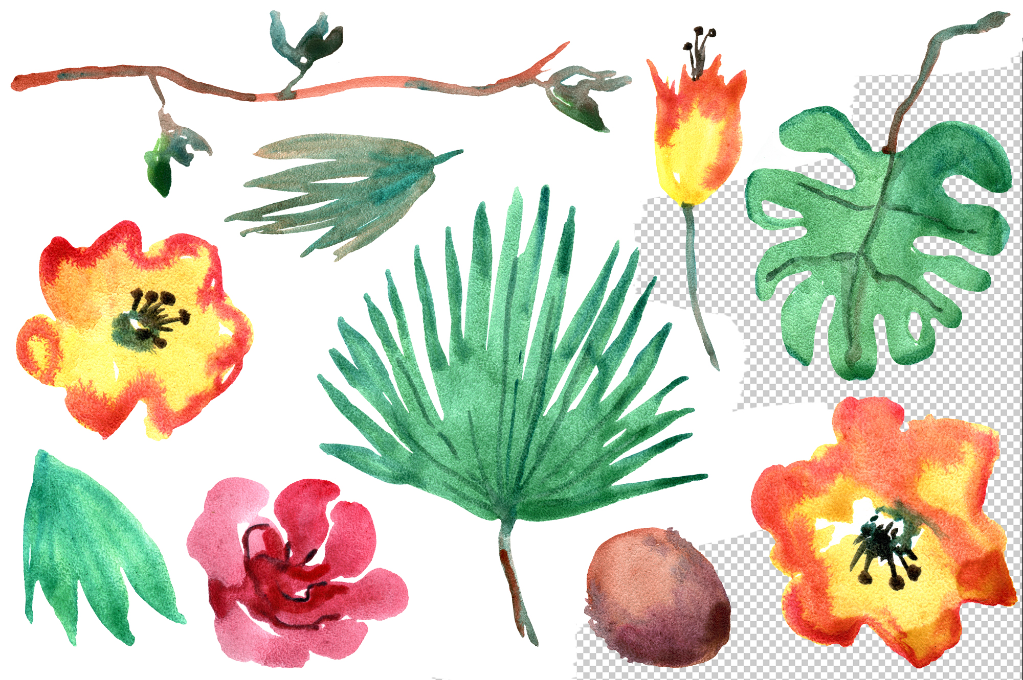 Tropical watercolor set example image 3