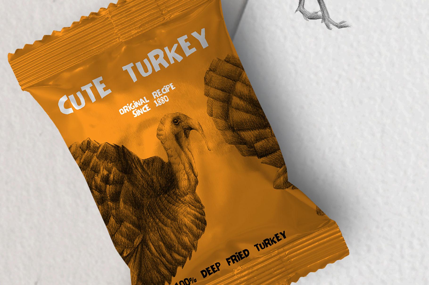 Hand drawn Turkeys Illustrations example image 2