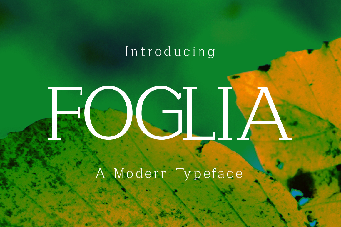 Foglia example image 1