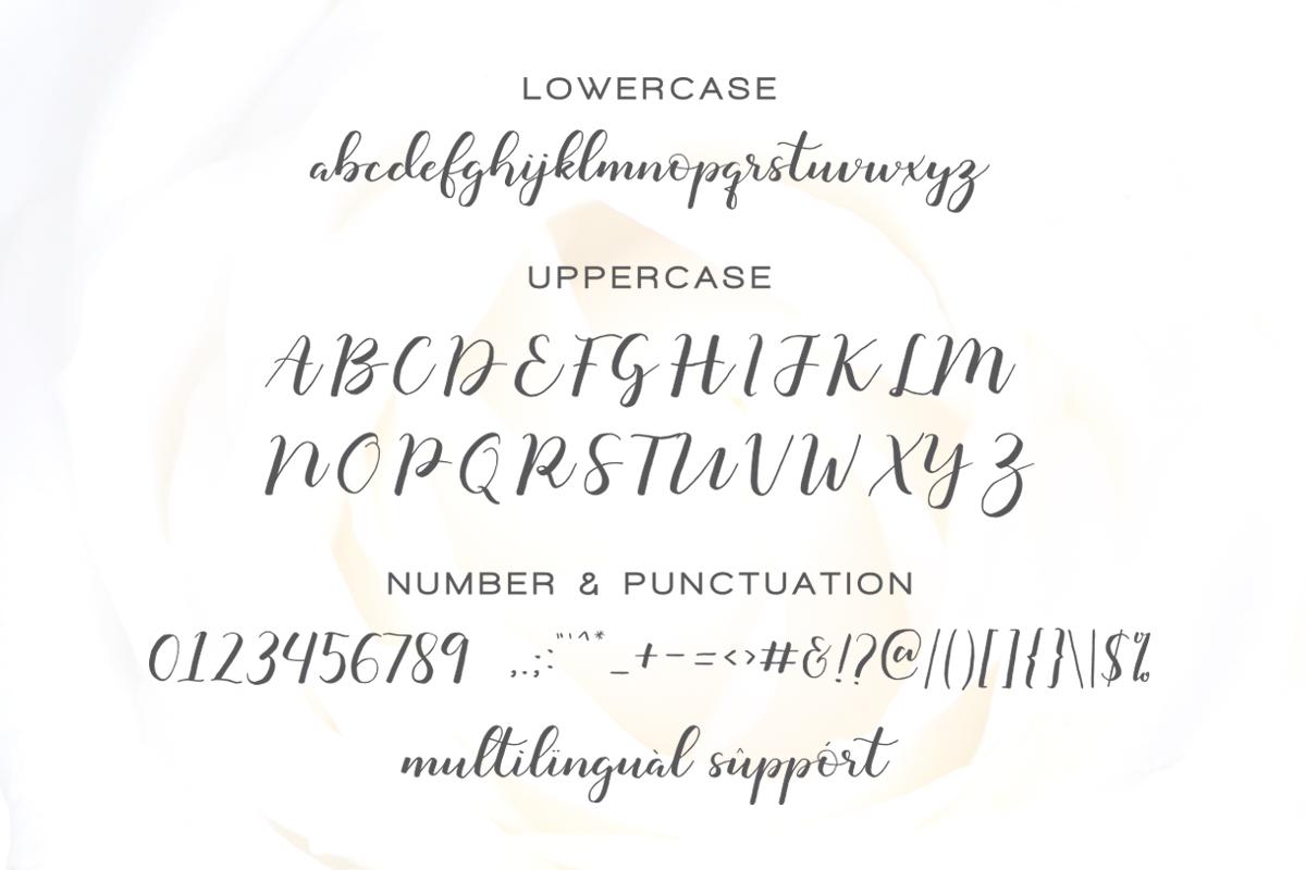 Monatia - Elegant Script example image 11