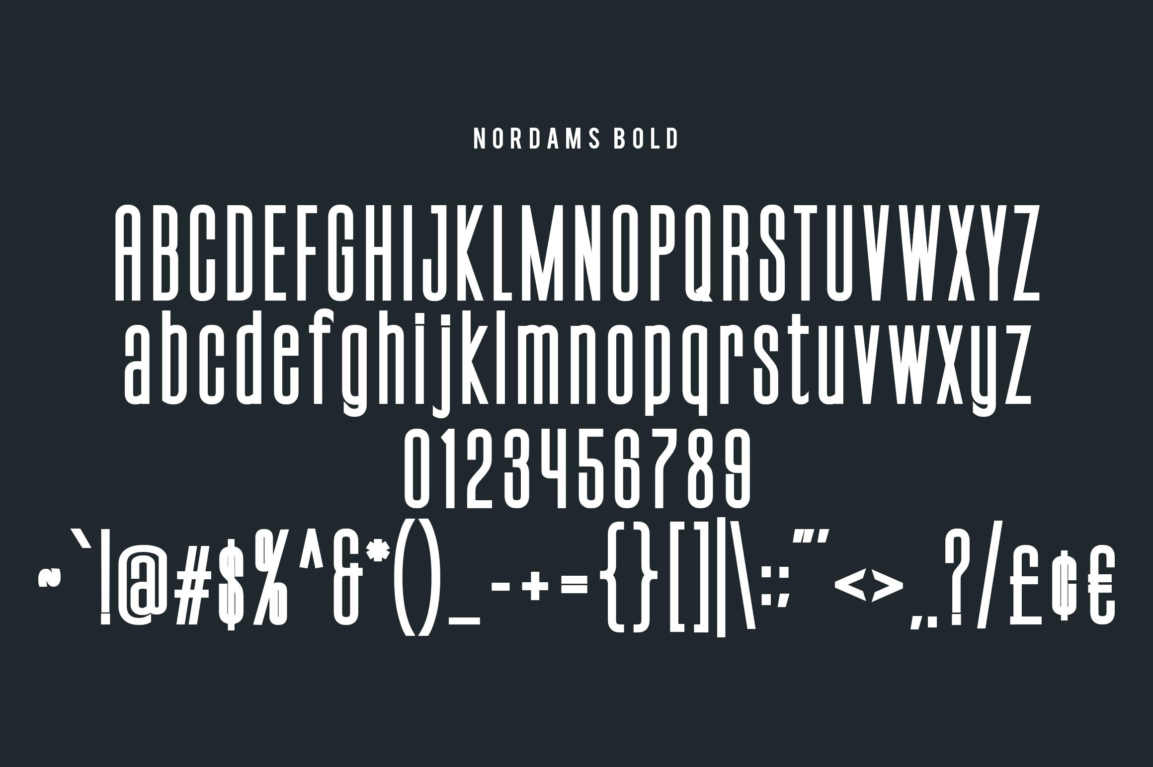 NORDAMS - Sans Serif example image 8