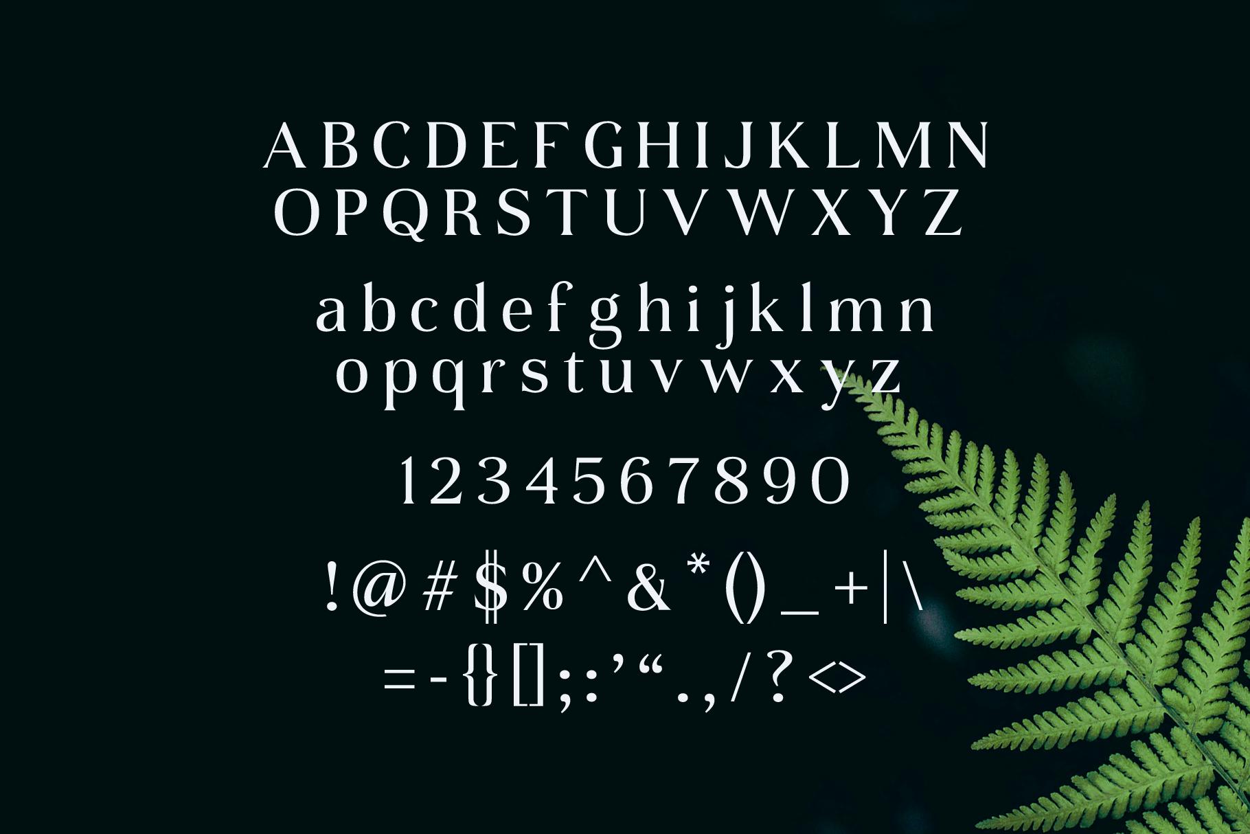 Daria Type example image 3