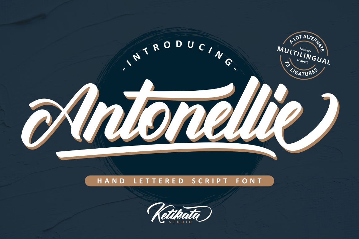 Antonellie Hand Lettered Script example image 1