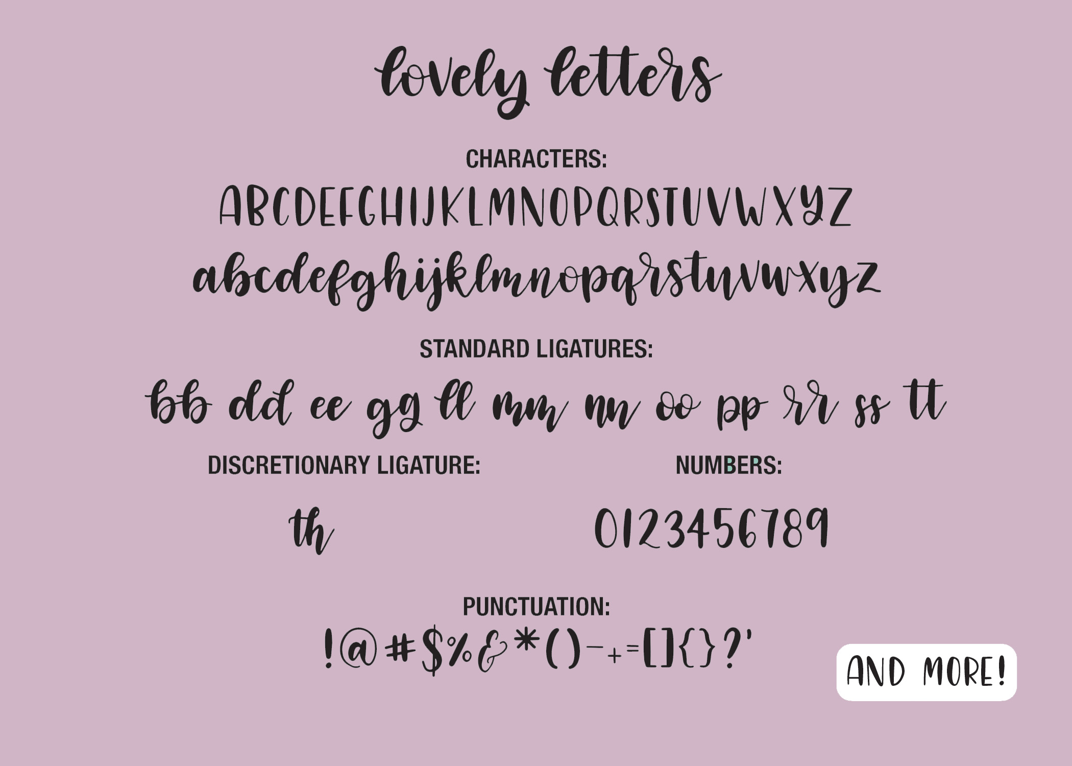 Four Hand Lettered Fonts Bundle by Jordyn Alison Designs example image 4