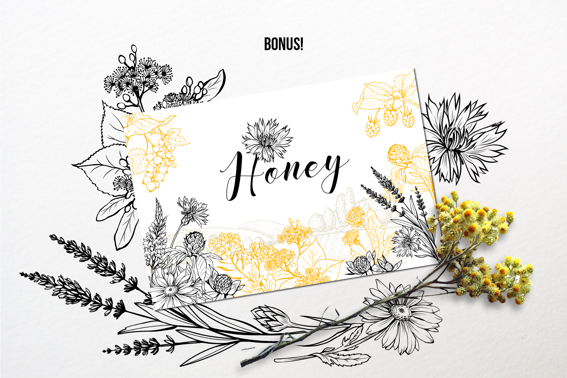Honey Plants Engraving Collection example image 4