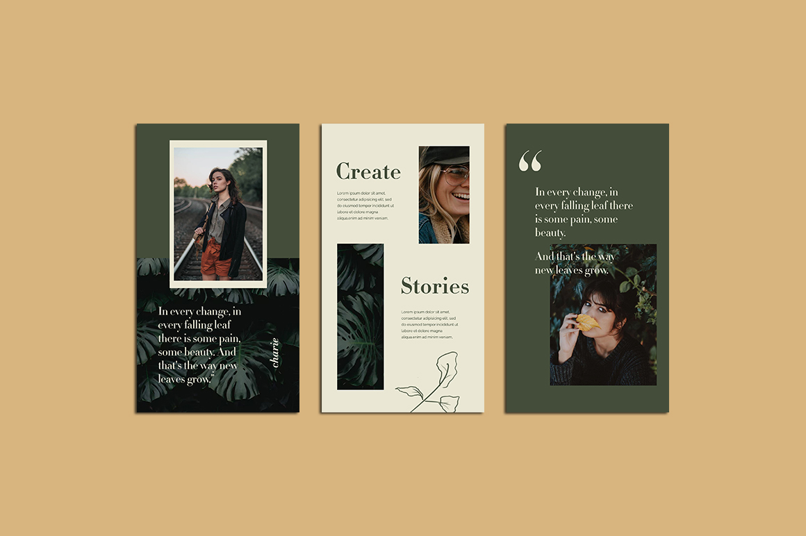 Charies Instagram Templates example image 3