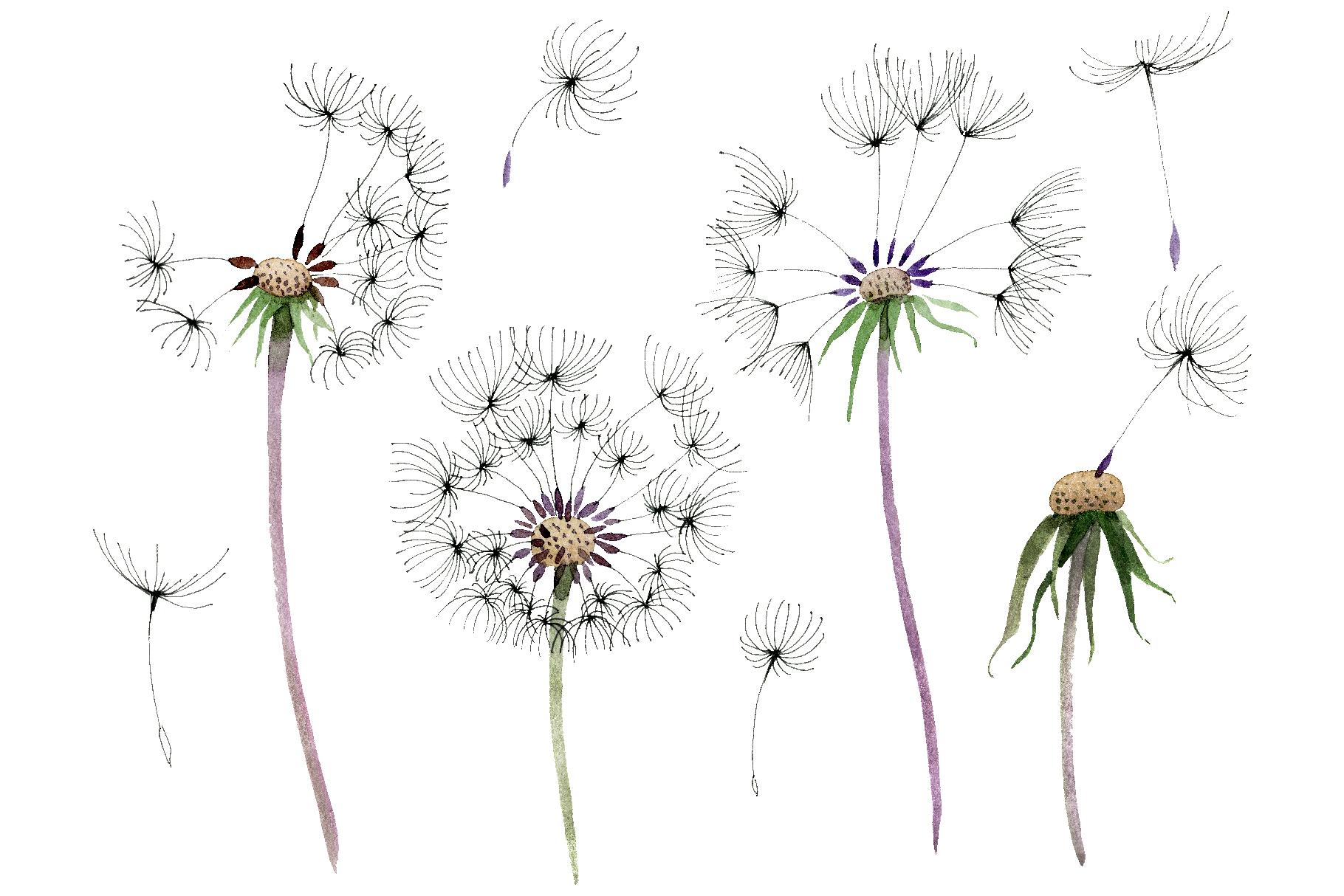 Bouquet rainbow dandelion watercolor png example image 1