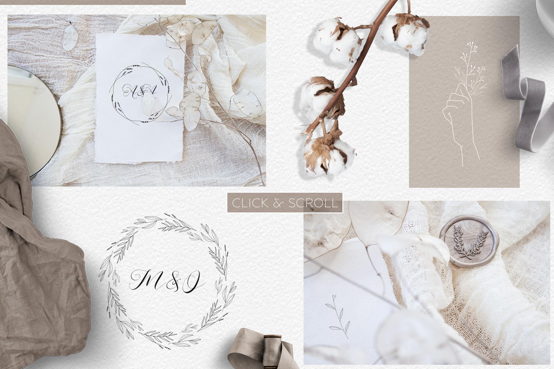 Line art botanical illustrations example image 2
