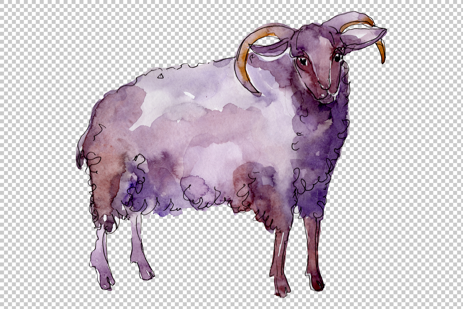 Farm animals Ram Watercolor png example image 6