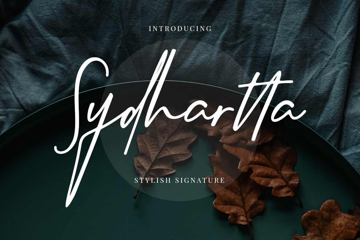 Sydhartta Stylish Signature example image 1