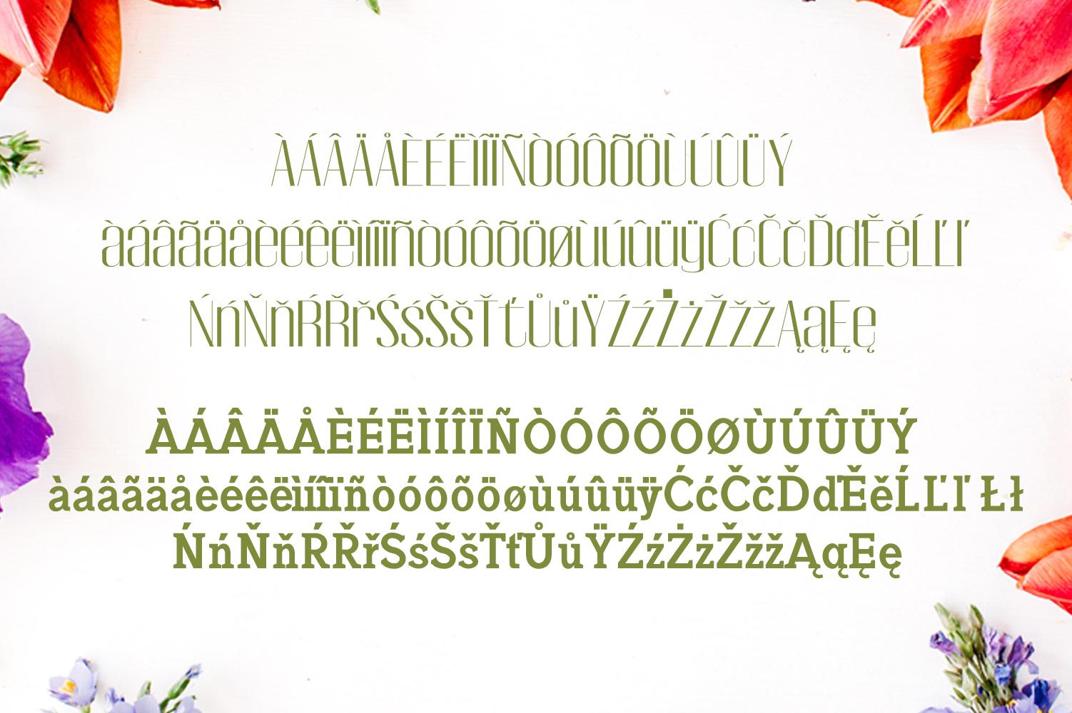 Jadrien Serif + Sans Duo 5 Font Pack example image 3