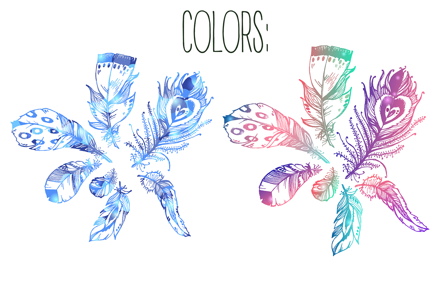 Vector boho feathers. Designs. example image 2