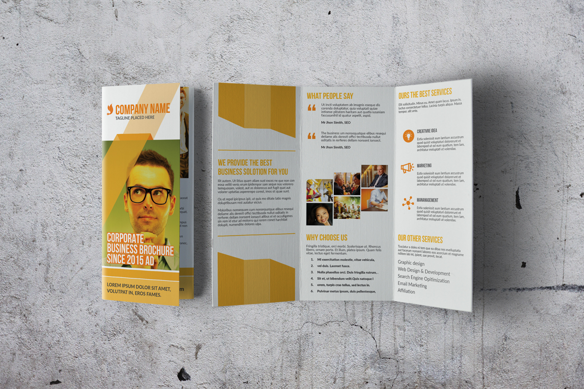 Trifold Corporate Brochure example image 5