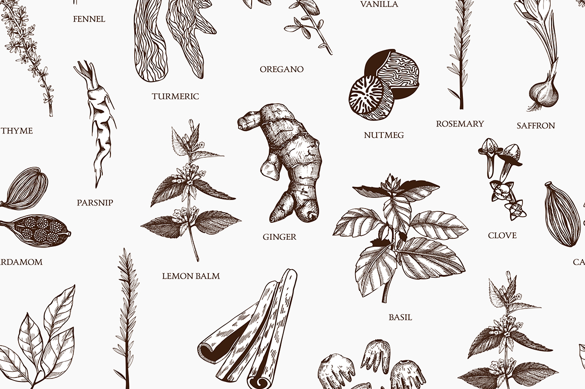 Ink Hand Drawn Spice Collection example image 11