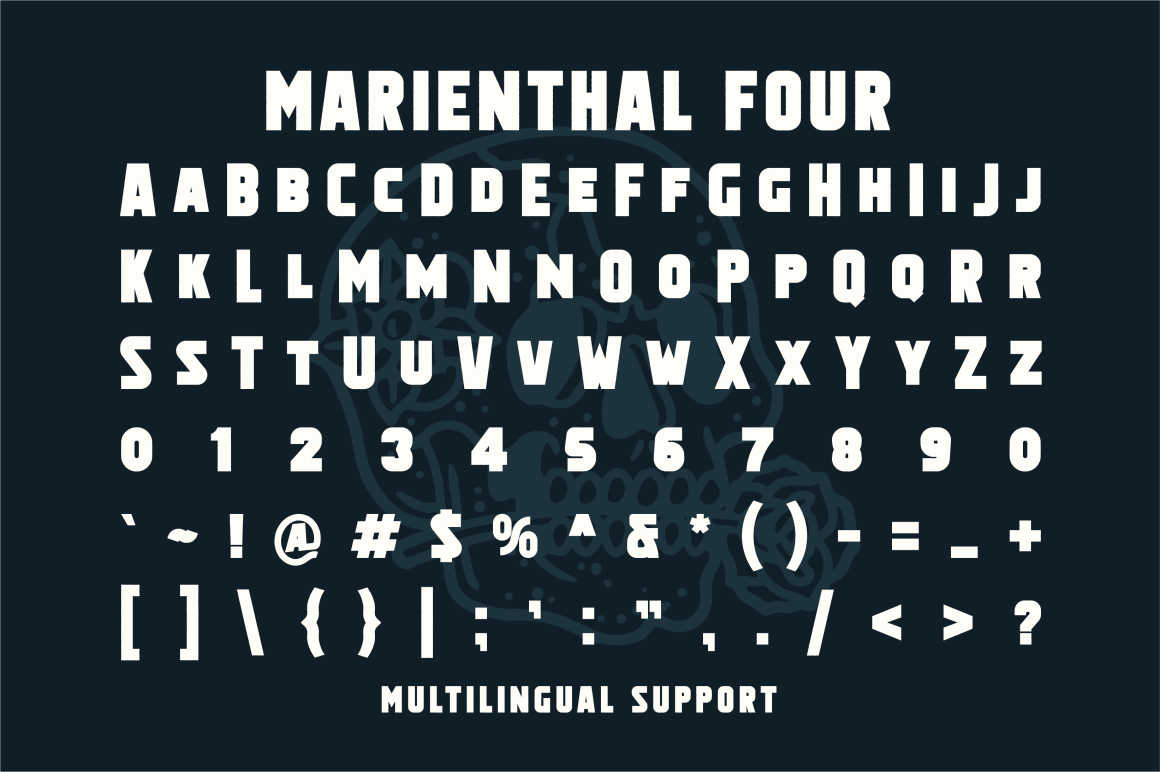 Marienthal Font Bundle Extras! example image 7