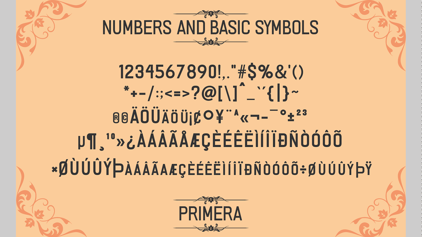 Primera Fontype example image 4