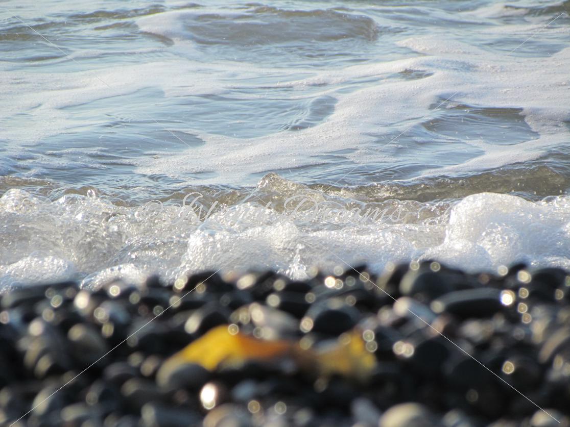 Beach Bundle example image 3