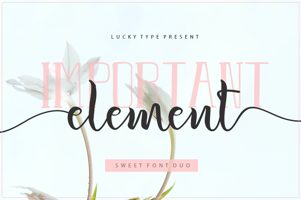 The Authentic Script Font Bundle example image 13
