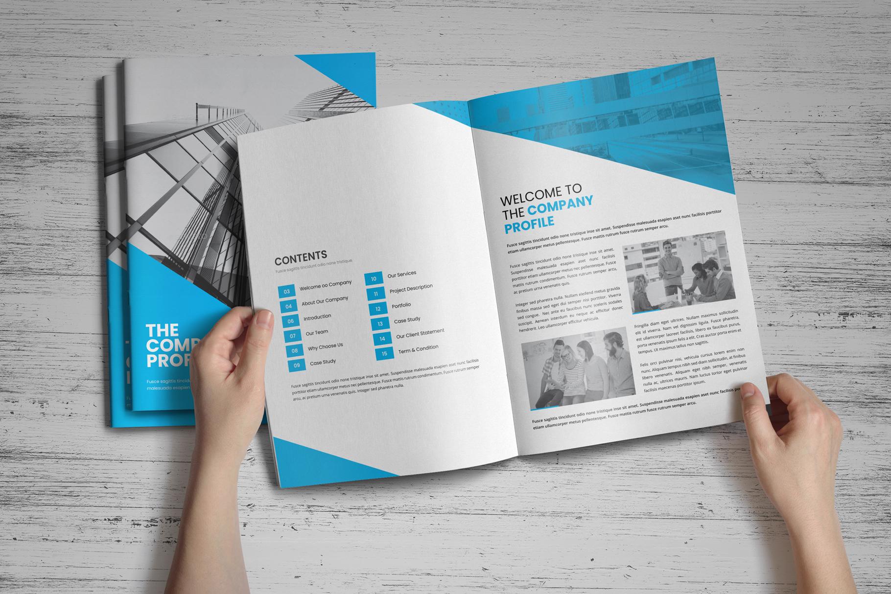 Company Profile Brochure v8 example image 13