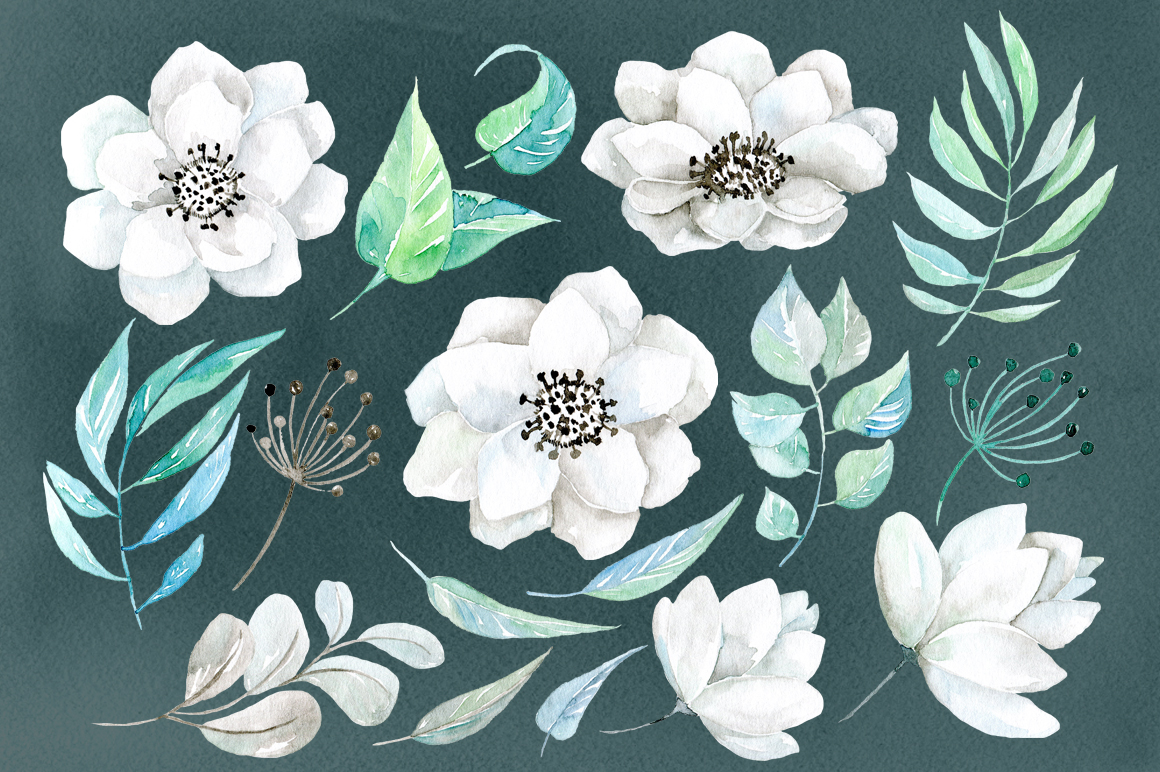 Watercolor white flowers 38 png example image 2
