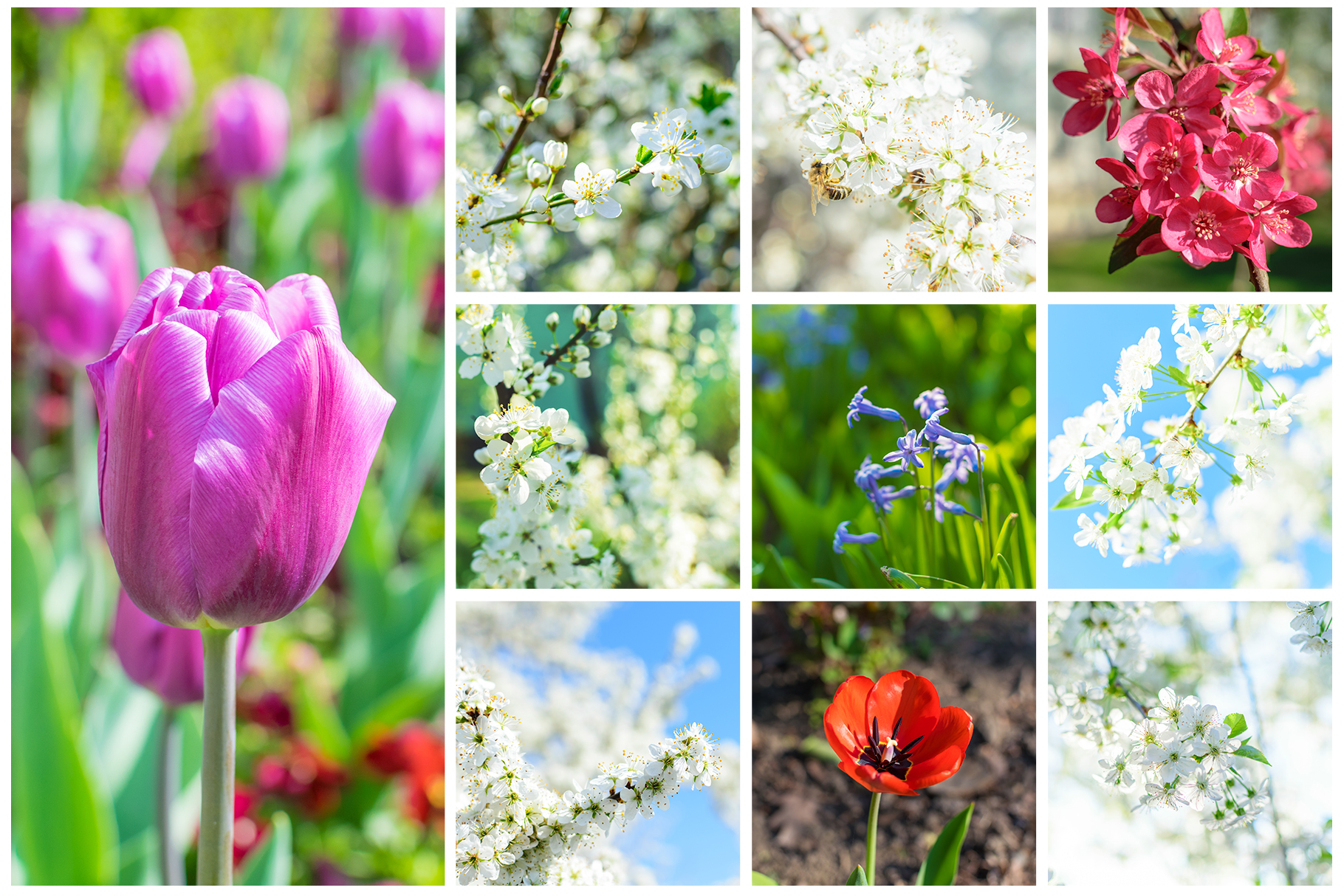 Spring Flowers and Paintings Bundle example image 10