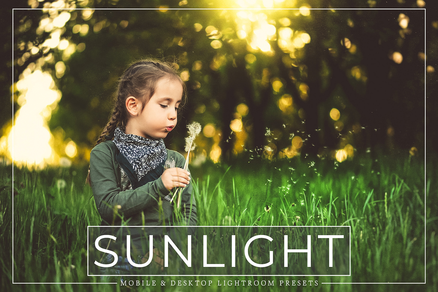 Sunlight Mobile and Desktop Lightroom Presets Pack example image 1