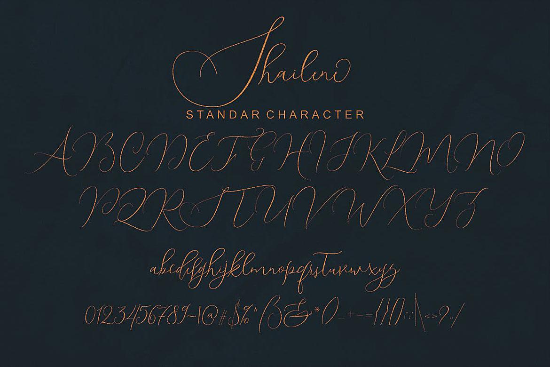 Shailene Script Font example image 7