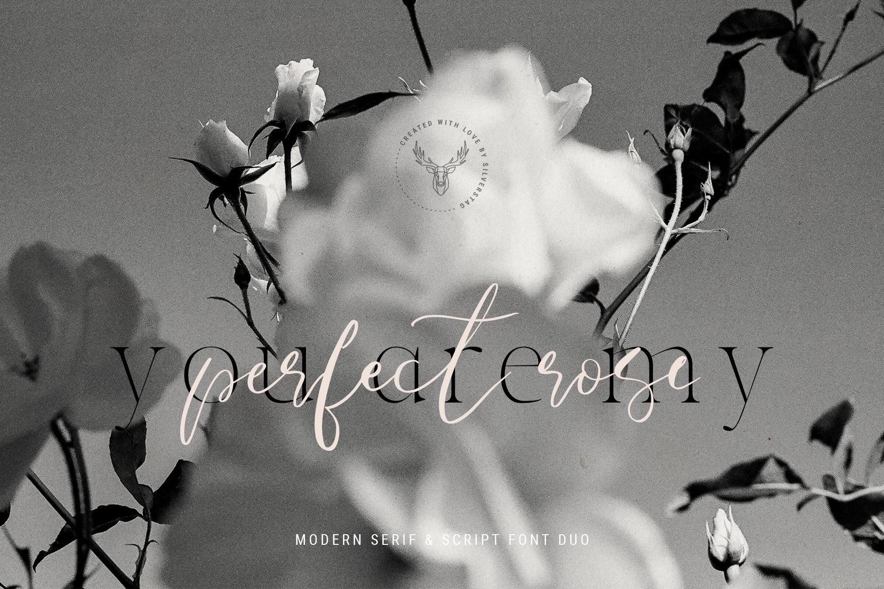 Verona Amore - Modern Serif & Script Font Duo & Extras example image 13