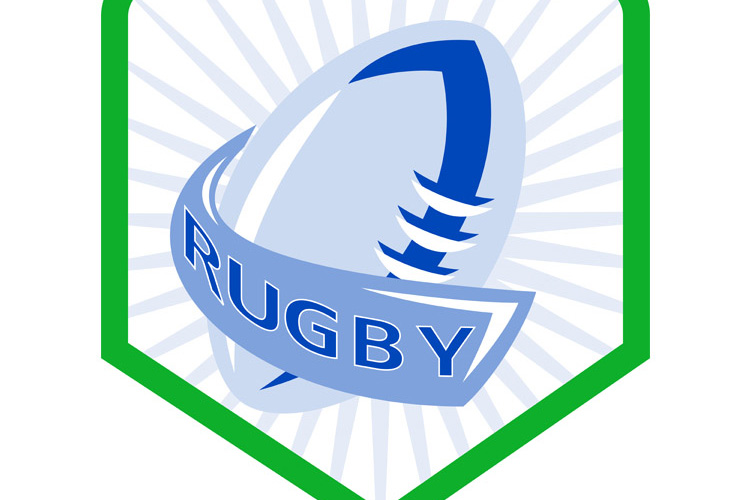 rugby ball shield example image 1