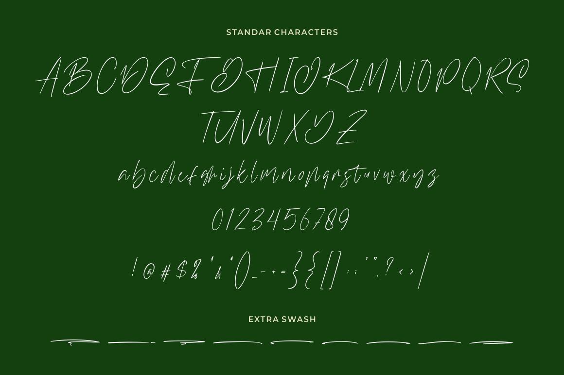 Williamson - Luxury Signature Font example image 7