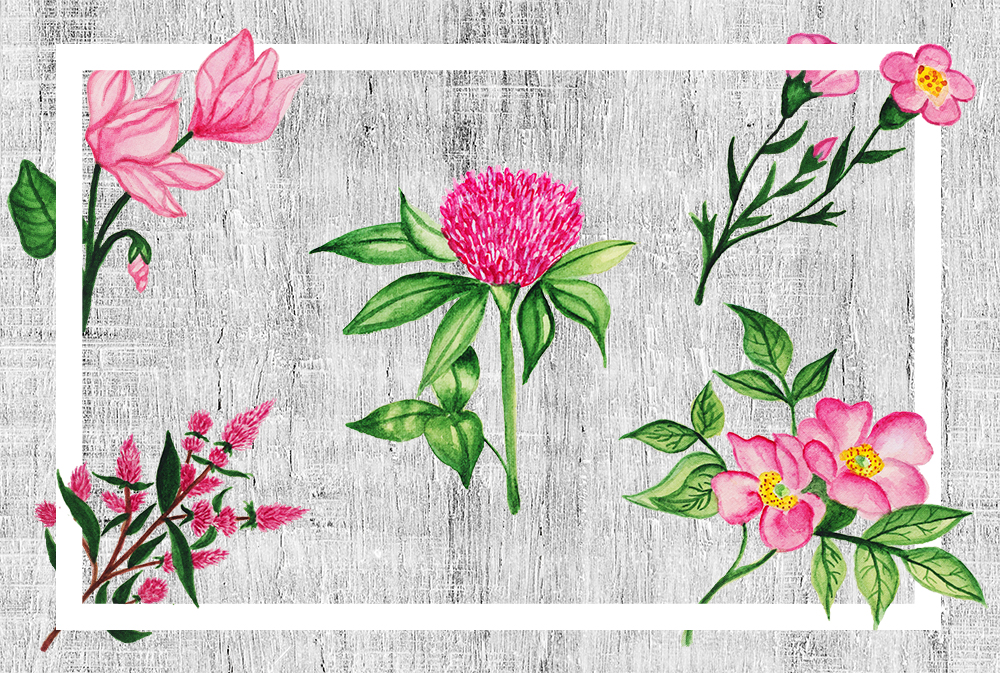 Watercolor Botanical Flowers example image 3
