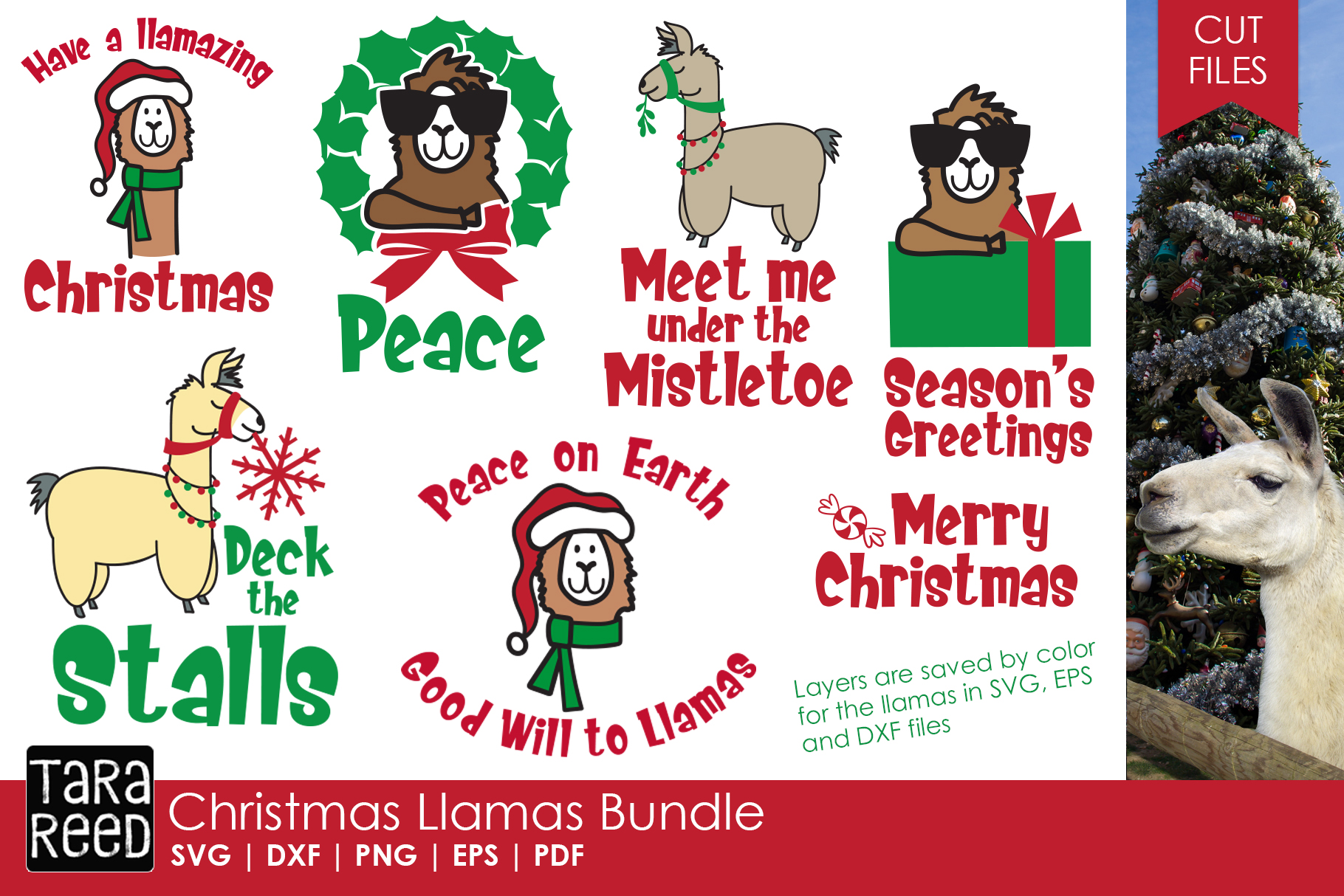 Christmas Llamas - Christmas SVG and Cut Files for Crafters example image 1