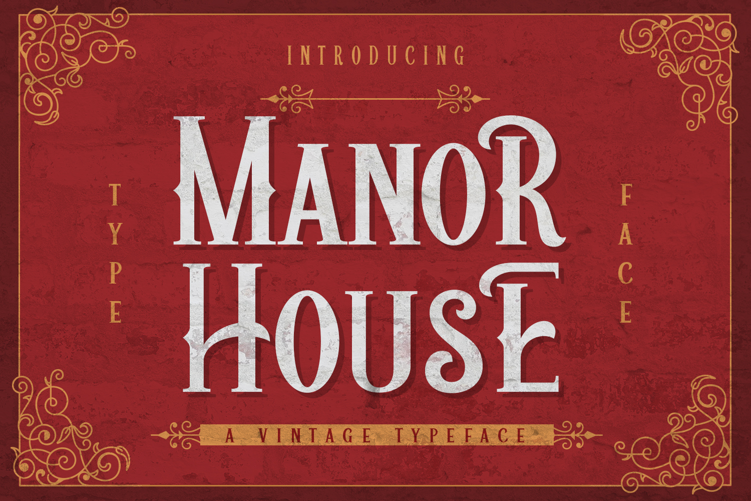 Manor House example image 1