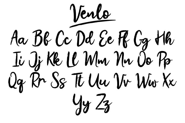 Venlo Brush Font example image 6
