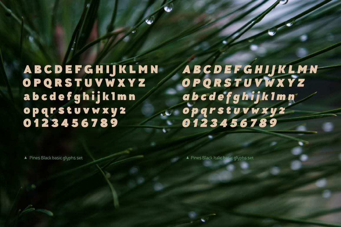 Pines Black & Pines Black Italic example image 7