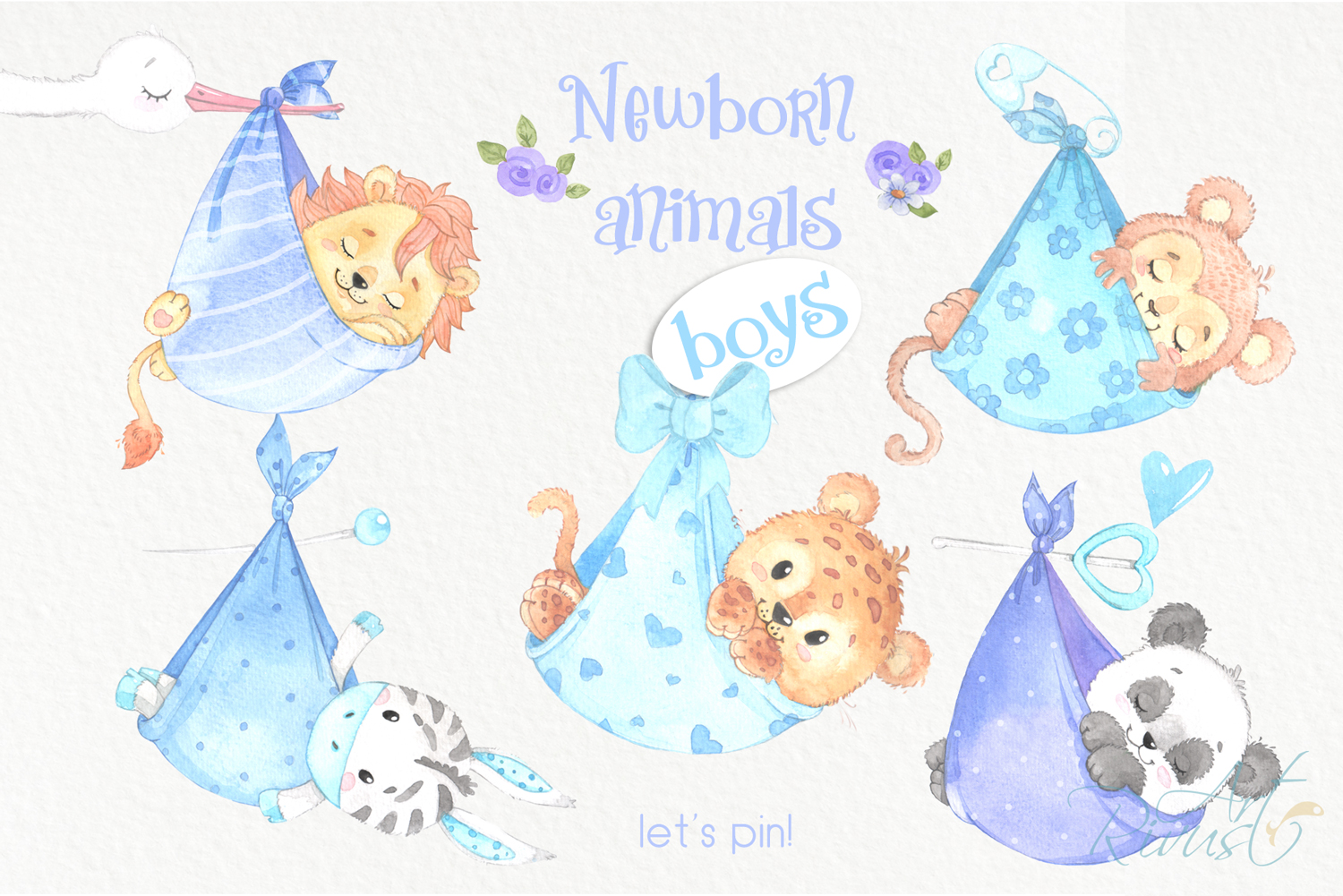 It's a boy Newborn animals clipart PNG download. African Saf example image 4