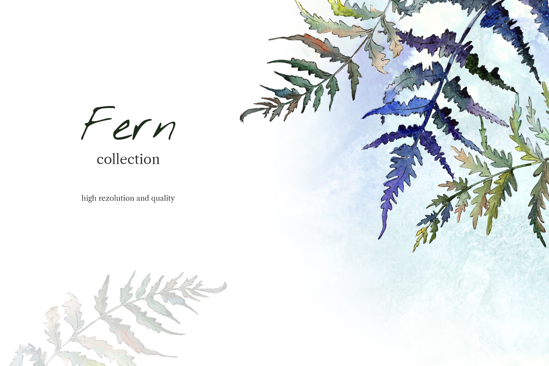 Fern leaf clipart watercolor png example image 7