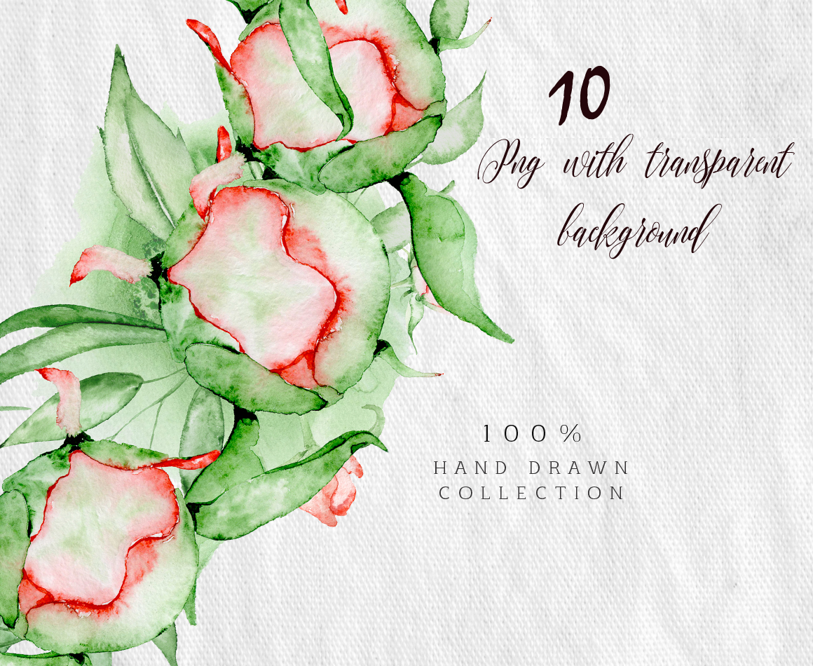 Watercolor peonies wreath clipart example image 3
