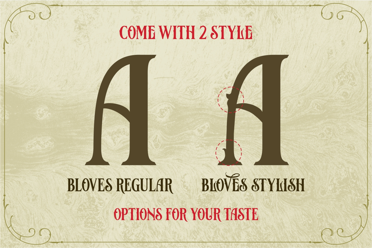 Bloves Vintage Typeface example image 10