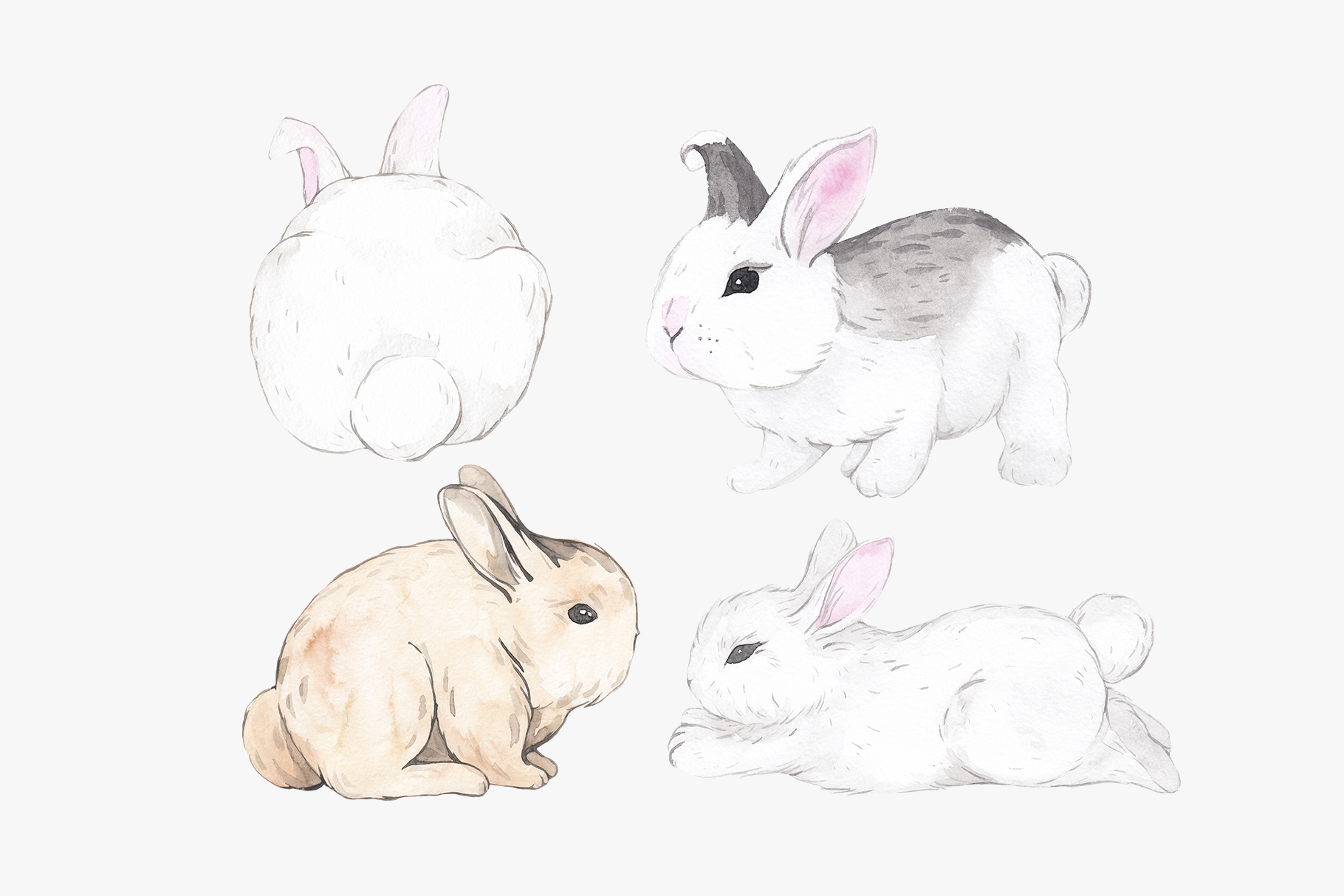 WHY SO CUTE 10 Easter watercolor bunnies example image 6